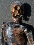 Burnt Riley Skeleton